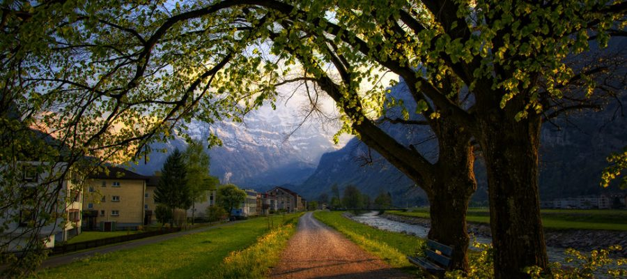 167265__switzerland-evening-spring-trees-road-bench-bench-houses-mountains-the-alps-the-city_p